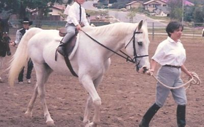 My First Horse REALLY Was an Old Gray Mare