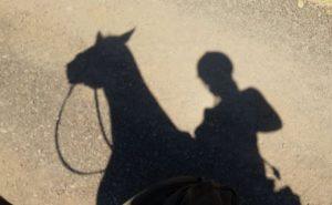 OldGrayMares Shadow Portrait